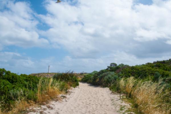 Miramar Beach Rules & Regulations